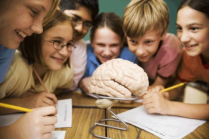 A child's brain needs experience, not just information