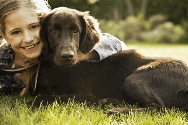 Autism Series Part VIII: treating Autism with therapy pets