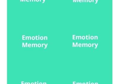Emotion Memory Back